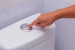 never flush